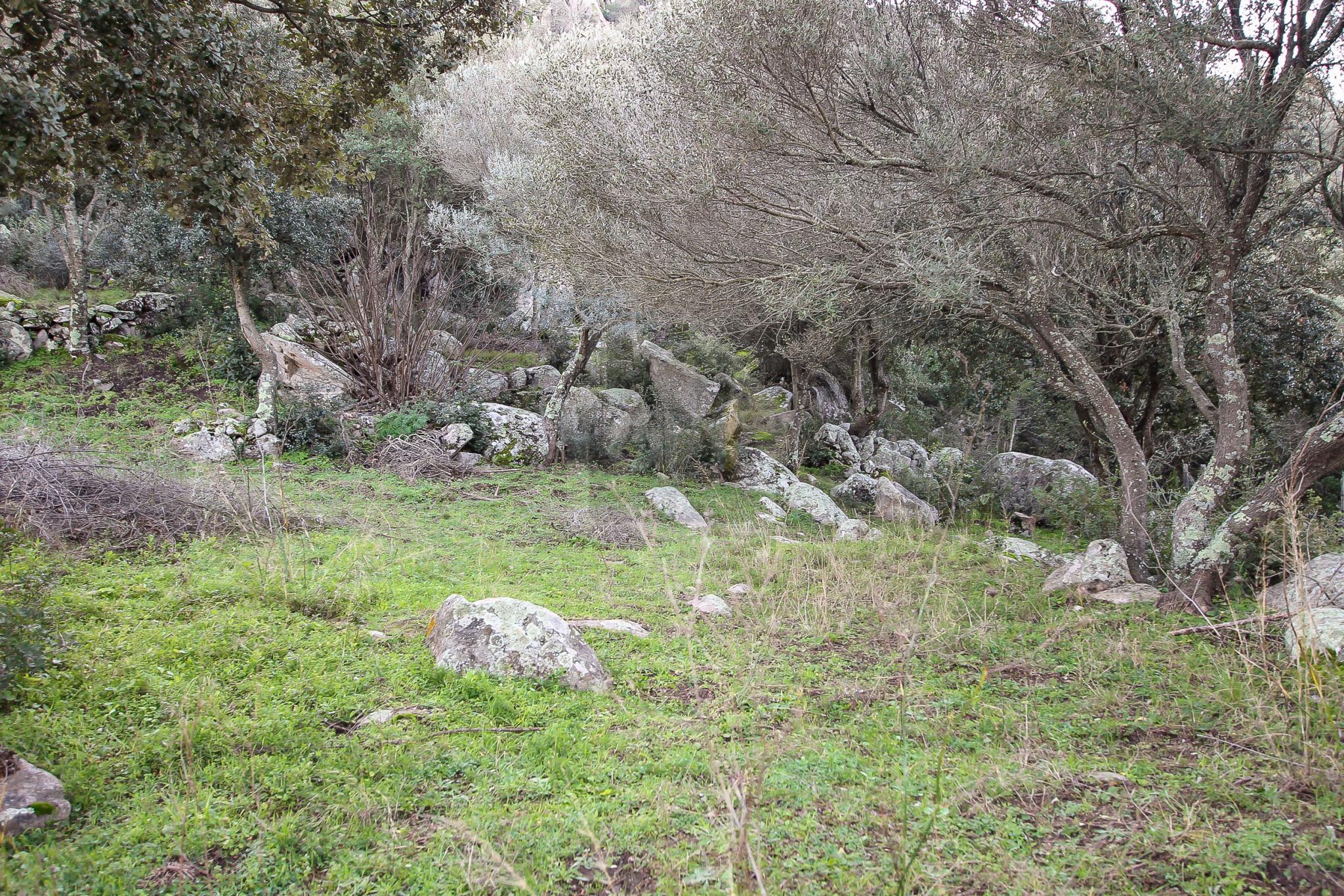 Rare : terrain constructible à Porto-Vecchio